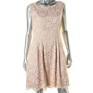 🆕 Vince Camuto A-Line Blush Lace Dress